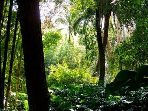 Jardin botanique de la concepcion Malaga