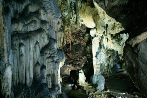 La Grotte de Ardales, Malaga