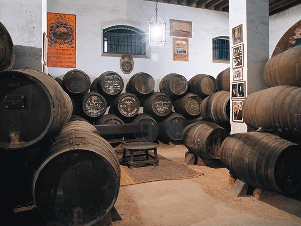 Cave Pedro Romero à Sanlúcar de Barrameda, Cadix (Andalousie)